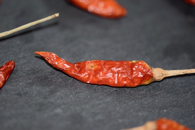 Tipps & Infos: Chilis: rote Bird-Eye-Chili