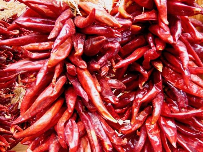 Tipps & Infos: Chilis - Wissenswertes: rote Chilis, getrocknet