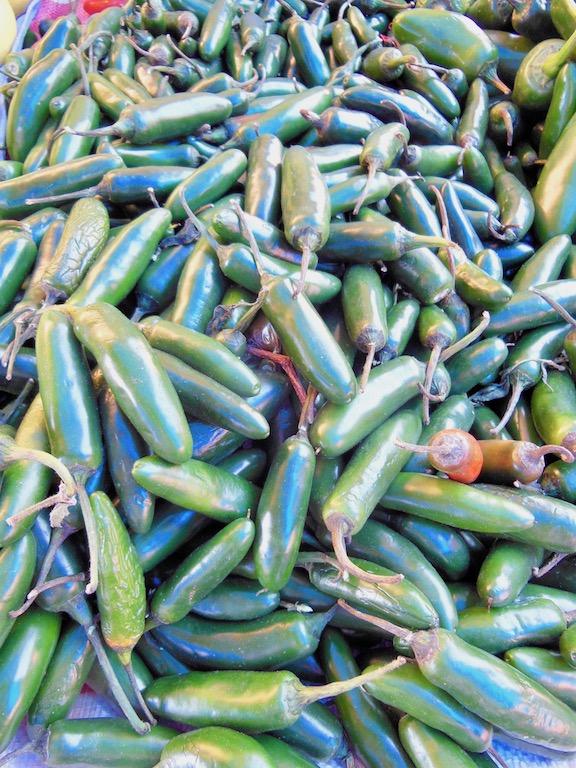 Tipps & Infos: Chilis: Jalapeños - frisch