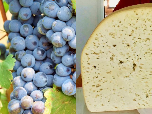 Essen und Trinken in Georgien – Wein und Käse